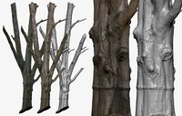 cleaned retopologized 30k tree 3D model
