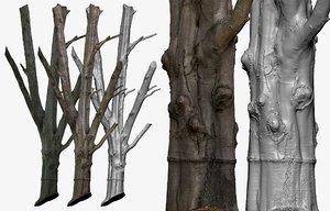 cleaned retopologized 30k tree 3D model