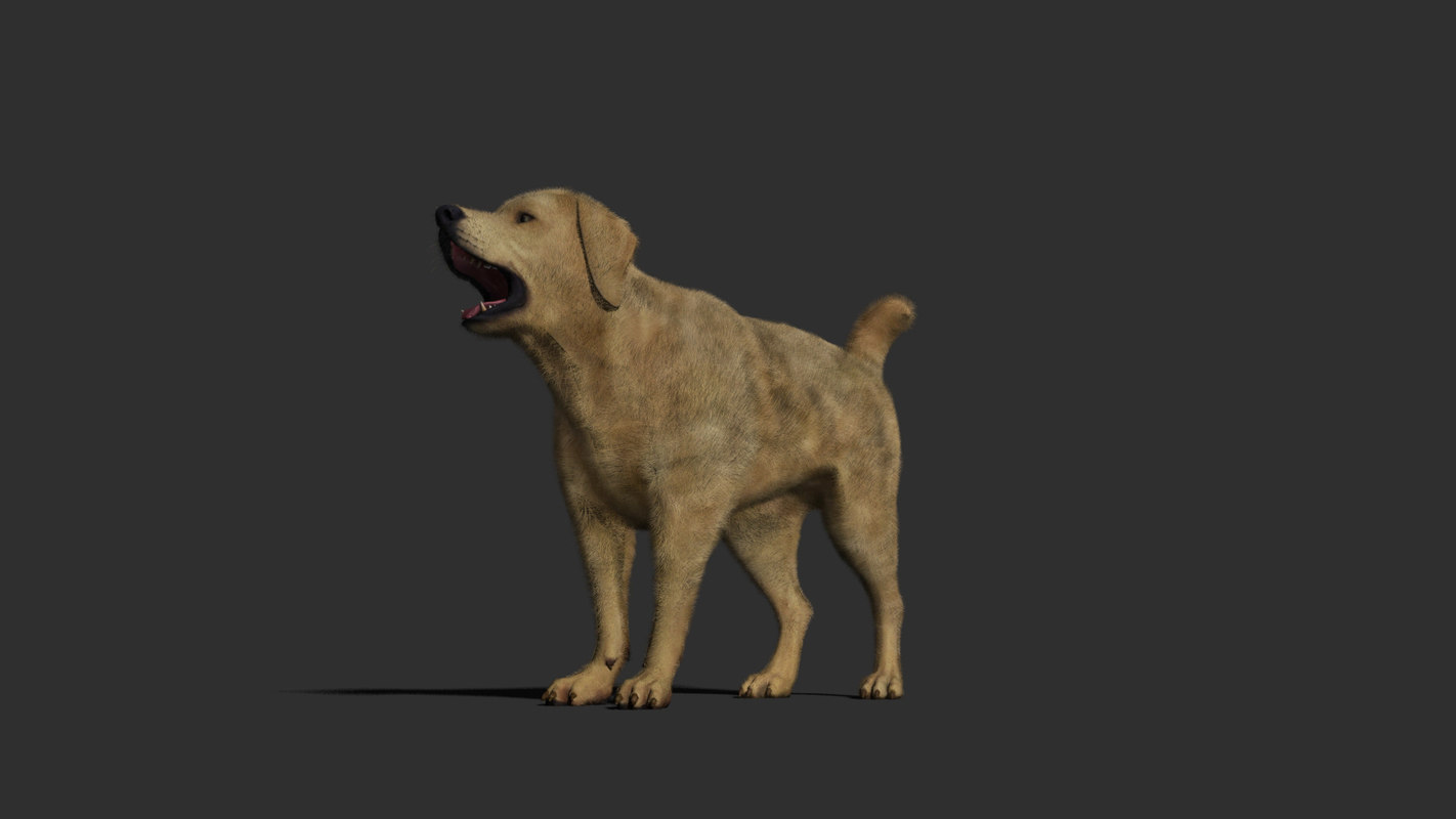 3D dog rig animations model