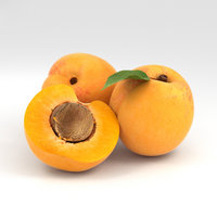 apricot food fruit 3D model
