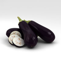 eggplant plant model