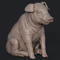 3D piglet print cnc