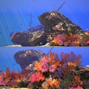 3D coral reef animation