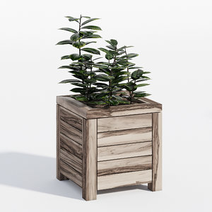 3D prestige model