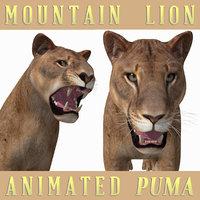 3D mountain lion