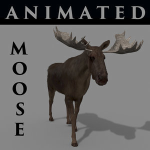 moose horn animations 3D model