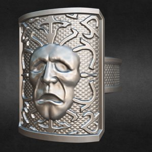ring shield 3D