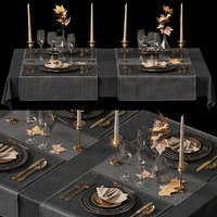 table setting 2 plates model