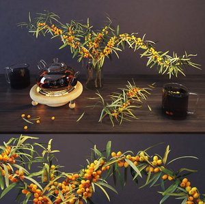 3D sea buckthorn
