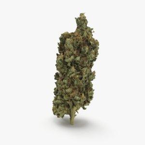 cannabis master kush 3D