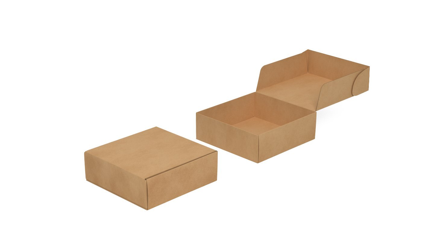 corrugated mailing box 2 3D