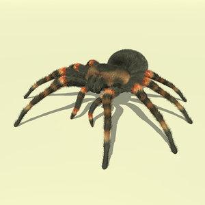 3D tarantula fur