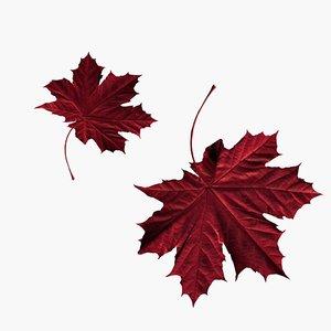 3D crimson leaf model