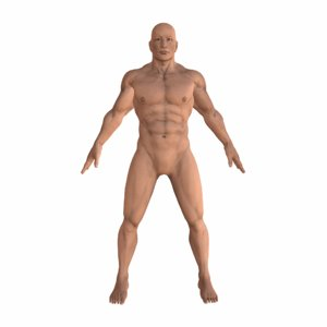 3D strong muscular rigged
