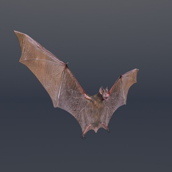 3D bat vfx cinematic