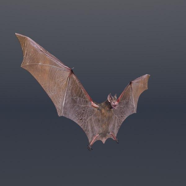 3D bat vfx cinematic