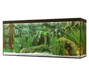 aquarium stones 3D model