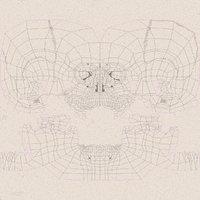 3D skull v-ray model