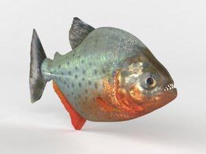 3D piranha modeled model
