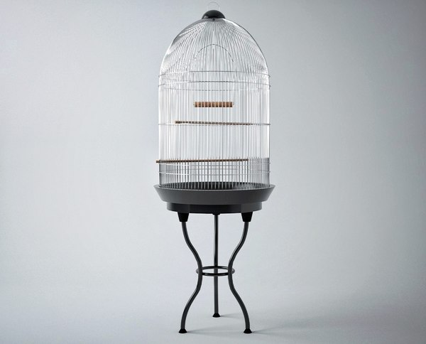 3D model -birdcage bird cage