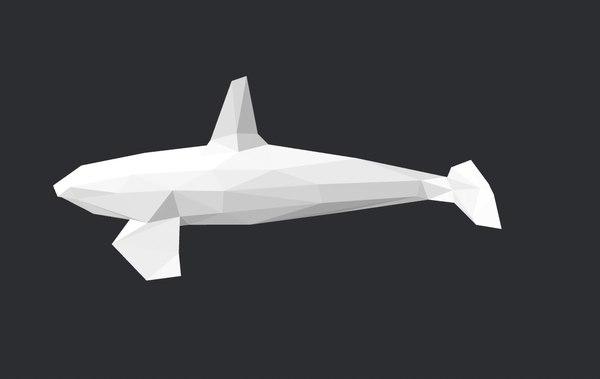 polywhaleseaanimalmarine organismmammal 3D model