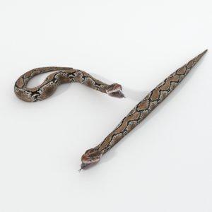 python snake 3D model