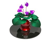 3D cyclamen flawer metallic