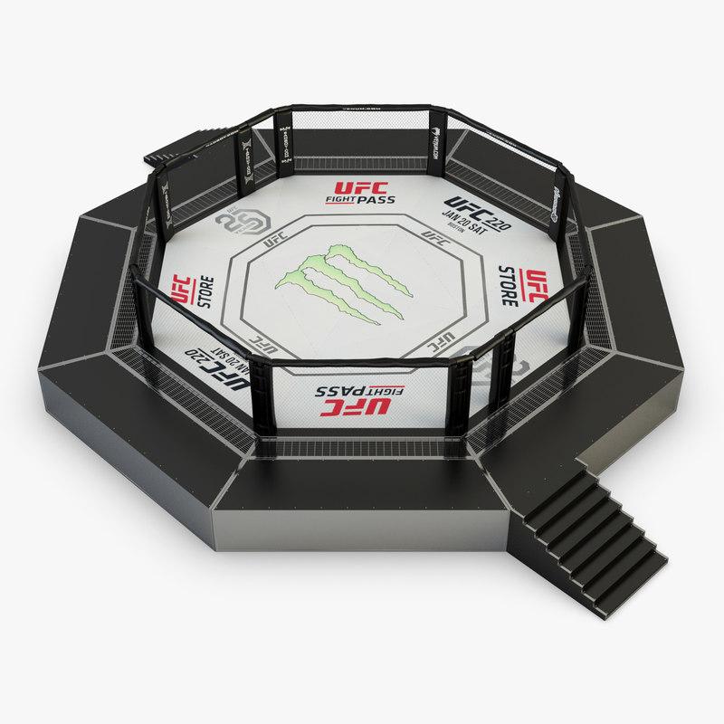 3D ufc octagon