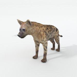 3D model hyena