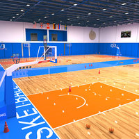 basketball basket ball 3D
