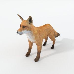 red fox model