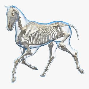 running horse pose envelope 3D model