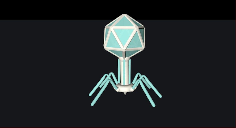 phage unity 3D