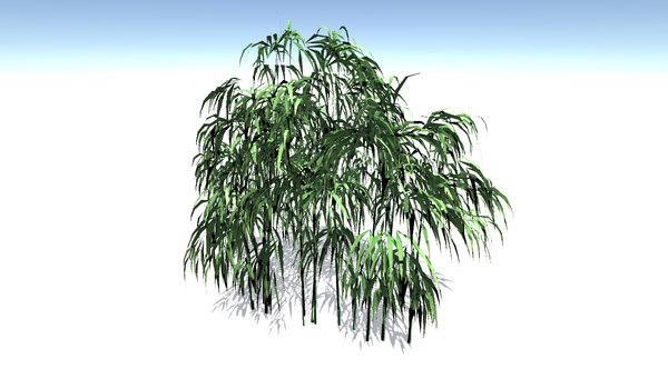 bamboo tree 3d model