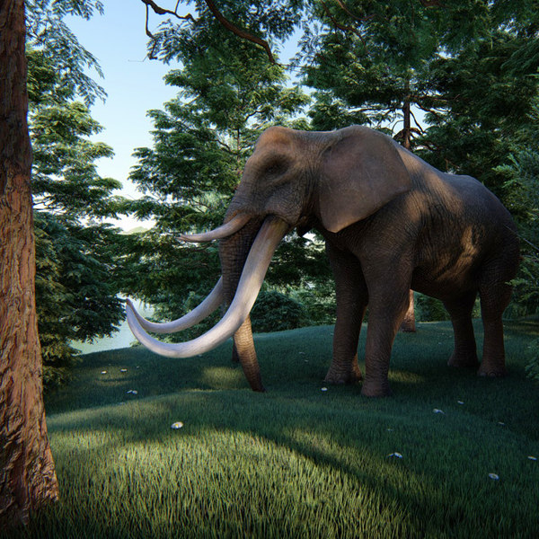 elephont rigged animation 3D