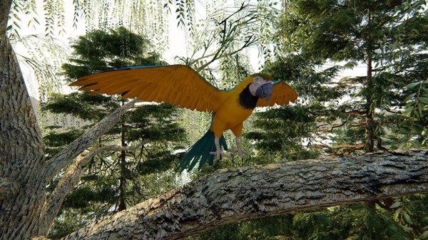 3D photorealistic parrot