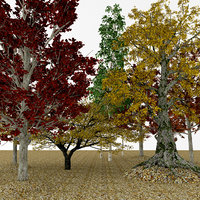 3D model autumn cherry aspen