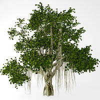 chinese banyan tree 3d max