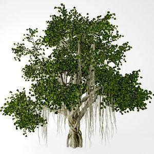 chinese banyan tree 3d max