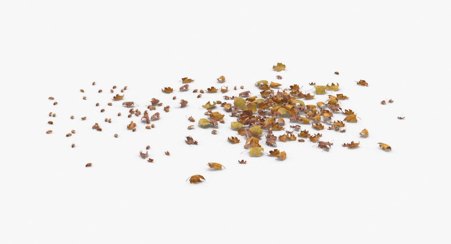 3D model dried-scattered-leaves---pile-02