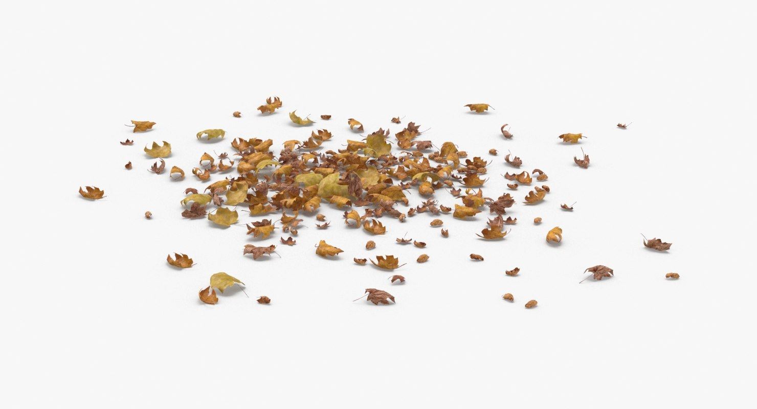 dried-scattered-leaves---pile-01 3D
