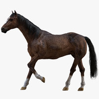 Brown Horse (Rigged) (Fur)