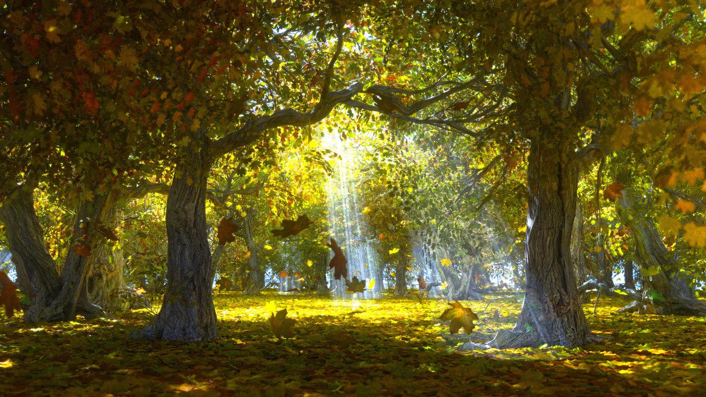 autumn forest 3D