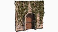 Ivy covered Medieval Door
