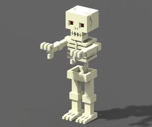 3D voxel skeleton