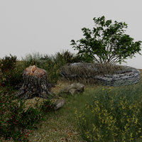 3D landscape grass wildflowers