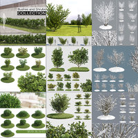 Bushes and Shrubs Collection