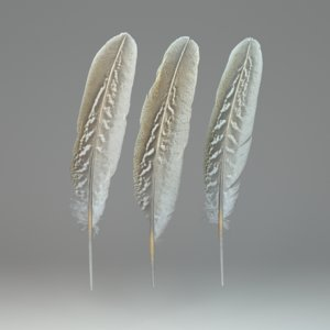 3D feathers