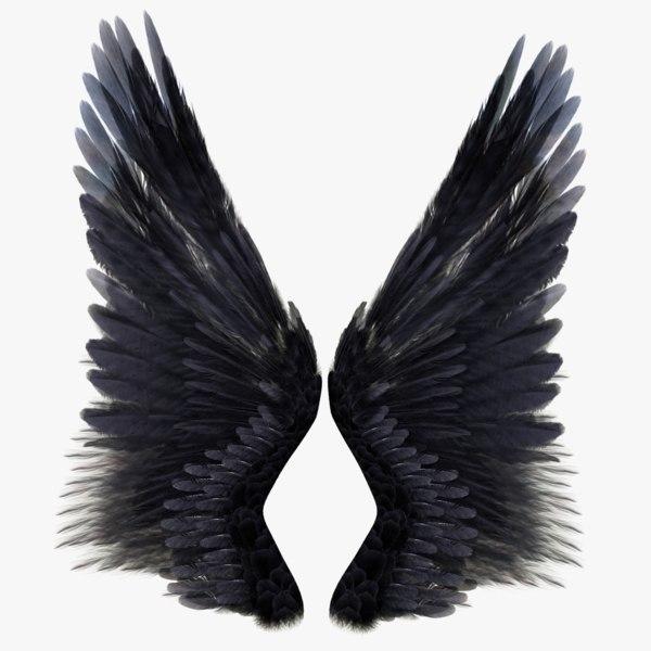 realistic wings 3d model