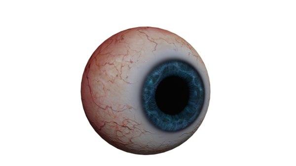 eye realistic 3D model